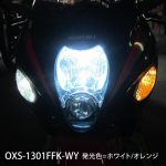 SUZUKI GSX1300R Hayabusa ウインカーポジション・デイライトキット